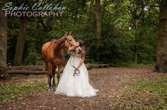 Equine Photoshoot, Essex | Sophie Callahan Photography - Specialist equine photographer