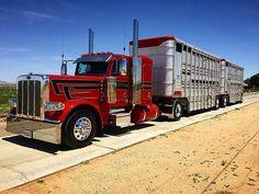 Bull Hauler of American Bullboy up! Big Rig Trucks, Semi Trucks, Cool Trucks, Train Truck, Road Train, Peterbilt 389, Peterbilt Trucks, Custom Big Rigs, Custom Trucks