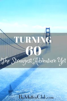 As author Lynnda Pollio celebrates her 60th birthday she reflects on life, how she got where she is, and what a strange new adventure turning sixty is.