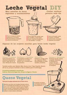 Cómo hacer leches vegetales en 3 sencillos pasos (infografía) | *La Cocina Alternativa*