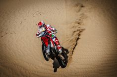 Honda RallyTeamHRC Rally, Honda, Challenges, Racing, Running, Lace