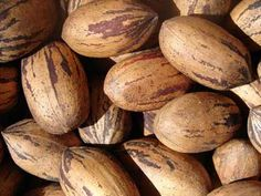 Pecans, Texas State Health Nut (2001). Texas is the largest producer of native pecans. There are over 1,000 varieties of pecans and many are named for Native American Indian tribes such as Cheyenne, Mohawk, Sioux, Choctaw, and Shawnee. The pecan, because of its pure American heritage, is honored by having the month of April declared as National Pecan Month.