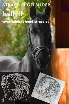 Hotfix Strass Bügelbild  Horse Pferd traumhafter Pferdekopf 130814 Karostonebox