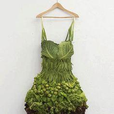 Respectable edible dress.