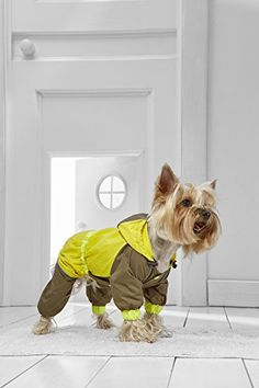 Toy Dog Raincoat With Hood For Yorkie Pom Chihuahua Papillon Lhasa Apso Shih Tsu -- Check out the image by visiting the link. (This is an affiliate link) Dog Raincoat, Hooded Raincoat, Yorkie, Chihuahua, Hydration Pack, Lhasa Apso, Dog Harness, Maltese, Dog Toys
