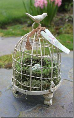 nest in birdcage