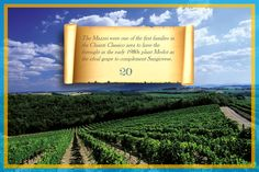 All'inizio degli anni Ottana la famiglia Mazzei ha avuto l'intuizione di impiantare il Merlot come complementare ideale al Sangiovese, uno fra i primi casi nel territorio del Chianti Classico. #Siepi20 @marchesimazzei #mazzei #fonterutoli  #tuscany #wine