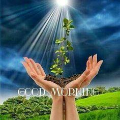 Good Morning Sunday Images, Good Morning Flowers Gif, Good Morning Nature, Good Morning Love Messages, Morning Pictures, Good Night Quotes, Good Morning Wishes, Morning Qoutes, Morning Greetings Quotes