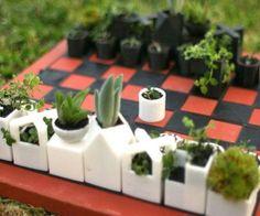 imagenes..Un juego de ajedrez hecho de plantadores suculentas