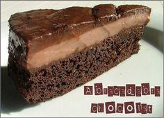 Ce gâteau là vous le connaissez peut être, ce sera certainement un best of de l'année sur Blog Appétit, il provient du magnifique blog Mirliton. Il me fait saliver depuis un bon moment... Je vais vous l'avouer : je l'ai réalisé trois fois avant d'être...
