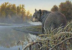 Steve Oliver Art--  Black_Bear_