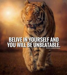 Home of world of quotes. Home of world of inspirational quotes for inspiration. Home of world of motivational stuff for motivation. Home of best things Tiger Quotes, Lion Quotes, Animal Quotes, Strong Quotes, Positive Quotes, Motivational Quotes, Inspirational Quotes, Reality Quotes, Success Quotes