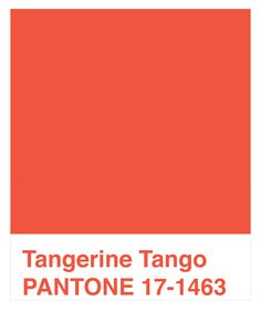 2012 Color of the year.  Pantone Tangerine Tango (17-1463)    Wear it well!