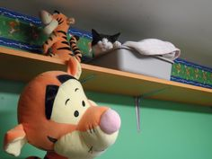 Cee Cee slept near stuff animal on upper shelf.