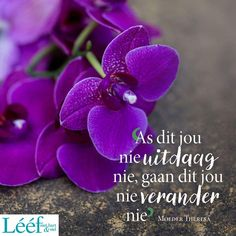 Afrikaans Quotes, Ocean Wallpaper, Staying Positive, Motivational Quotes, Van, Christianity, Lisa, Bible, Magazine