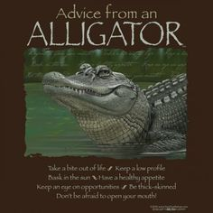 Advice from an Alligator T-Shirt – Your True Nature, Inc. Animal Spirit Guides, Spirit Animal, Earth Sun And Moon, Sun Moon, I Stand Amazed, Quirky T Shirts, Animal Meanings, Baby Alligator