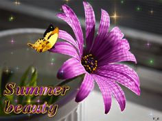 Butterfly Flowers, Animation, Heart, Plants, Summer, Beautiful, Physical Intimacy, Amor, Irises