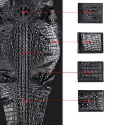 The bifold card holder wallet that is originally made of Crocodile Backbone Skin is the best choice for classy people. Alligator Wallet, Classy People, Crocodile Skin, Pen Case, Cow Leather, Leather Wallet, Wallets, Upholstery, Lifestyle