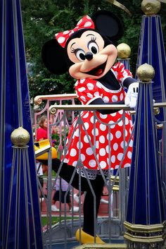Minnie Mouse on parade! The parade at Animal Kingdom every afternoon is the best.  We are there every day!