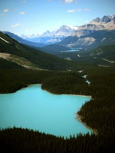 """me-lapislazuli: """"Peyto Lake, Banff NP, Alberta, Canada. So proud to live near such beautiful areas :) """" Places Around The World, The Places Youll Go, Places To See, Parc National De Banff, National Parks, Rocky Mountains, Beautiful World, Beautiful Places, Paisajes"""