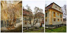 Castelul si parcul dendrologic Rakoczi-Bornemisza din Gurghiu – vizita cu parfum nobiliar maghiar | Jurnal de Hoinar