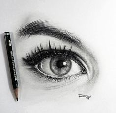 Art Images, Art Drawings, Amazing Drawings, Art Sketches, Pencil Drawings, Pencil Shading, Pencil Art, Drawing Techniques, Sketch Painting
