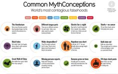 52 Of The Most Common Myths and Misconceptions Debunked In One Infographic | IFLScience