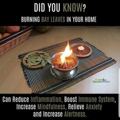 We Have The Best Advice For Quick Relaxation: Stress Disappears When You Burn A Leaf Of This Plant! Natural Medicine, Herbal Medicine, Bay Leaf Benefits, Burning Bay Leaves, Dr Sebi Recipes, Detox Meal Plan, Love Natural, Water Recipes, Health And Beauty Tips