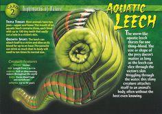 Part Caterpillar Part Vampire All Aquaric Spider Identification, Pet Spider, Old Blood, Wild Creatures, Fantasy Creatures, Underwater Creatures, Chihuahua Love, Skin Care Remedies, Vertebrates