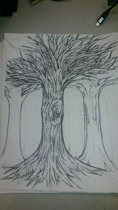 Tree study...