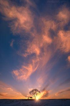 幻彩牧人 Water Pictures, Jeddah, Cobalt Blue, Beautiful World, Spirituality, Clouds, Sunrises, Beach, Nature