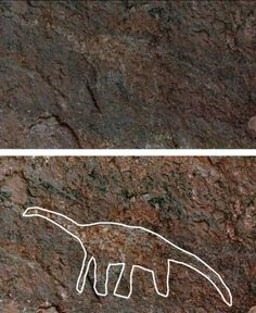 A cave drawing of a sauropod dinosaur by Native Americans. The lower picture is digitally traced to highlight the original.
