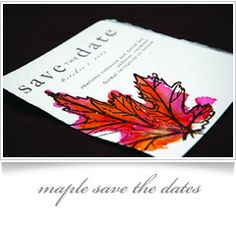 hand painted watercolor maple save the date _fall_red_orange_gold
