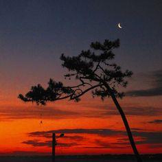Luna de enero en Atlántida, Canelones, Costa de Oro, departamento de Canelones, Uruguay.