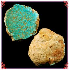 This is a  Spiderweb Turquoise Fossil Clam from the Number 8 Turquoise Mine in Nevada. These specimens are very rare! We are now selling high grade Turquoise Cabochons from our 40+ year collection of Natural High Grade Turquoise.