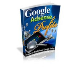 How to Make your website earn cash with AdSense The basics on how to get started making money with AdSense Discover how the pros do it