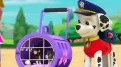 ♥♥ Patrulha Canina Portugues Brasil Desenho Completo ♥♥ ep #5 ♥♥ Patrulha Canina - YouTube