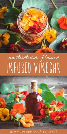When you have nasturtiums growing in your garden make this nasturtium flower infused vinegar! It has a gorgeous color and peppery flavor and can be used to make a wonderful and nutritious salad dressing. Infused Vinegar Recipe, Fermentation Recipes, White Balsamic Vinegar, Herbs For Health, Eating Raw, Edible Flowers, Real Food Recipes, Yummy Food, Herbal Remedies