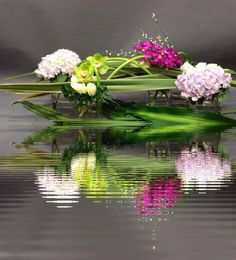 This site presents a complete wallpaper nifty images, presented to you seekers of information about wallpapers images. Contemporary Flower Arrangements, Floral Arrangements, Flower Show, Flower Art, Simple Flowers, Beautiful Flowers, Lilly Flower, Flower Installation, Arte Floral