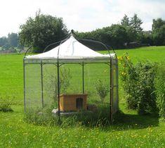 So dekorativ kann ein raubtiersicheres Außengehege sein: Ein Pavillon-Zelt mit Volierendraht und Holztür versehen.