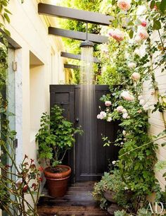 Outdoor rain shower amongst the roses