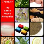 Natural Stomach Remedies - Nature Hacks – Natural Solutions For Everyday Life