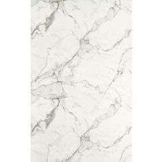 Formica Brand Laminate 60-in x 12-ft Calacatta Marble 180Fx-Etchings Laminate Kitchen Countertop Sheet