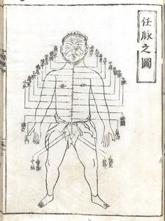 Anatomy-Acupuncture-Chinese-Medical-Accupuncture-Front