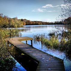 Gorgeous Picture of Bolam Lake,  Northumberland