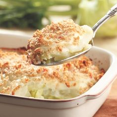 If you haven& tried kohlrabi, which tastes like a mild, sweet turnip, this gratin is an excellent place to start& all, what doesn& taste good with cheese sauce on it? Kohlrabi that are less than 3 inches in diameter will give you Healthy Casserole Recipes, Ham Recipes, Dinner Recipes, Cooking Recipes, Healthy Recipes, Skinny Recipes, Recipies, Skinny Meals, German Recipes