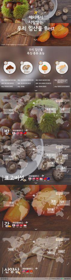 해외에서 사랑받는 우리 임산물 베스트4 [인포그래픽] #Forest products / #Infographic ⓒ 비주얼다이브 무단 복사·전재·재배포 금지