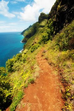 Kalalau Trail We hiked to the first beach on this trail. Want to go back to Kauai and hike the entire trail. Who's coming?