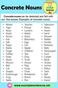 9 Best Noun Sentences Ideas Nouns Sentences Sentence Examples