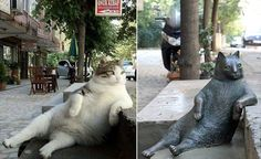 """thefabulousweirdtrotters: """" That super chill cat was from a neighborhood in Istanbul and when she passed away in 2015 the residents missed her so much they made a statue of her sitting in the same spot (Twitter ) Follow us on Twitter..."""